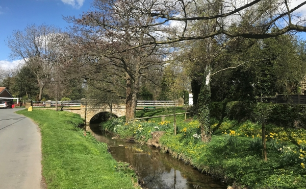 Things to do in Great Broughton | Mulgrave Properties